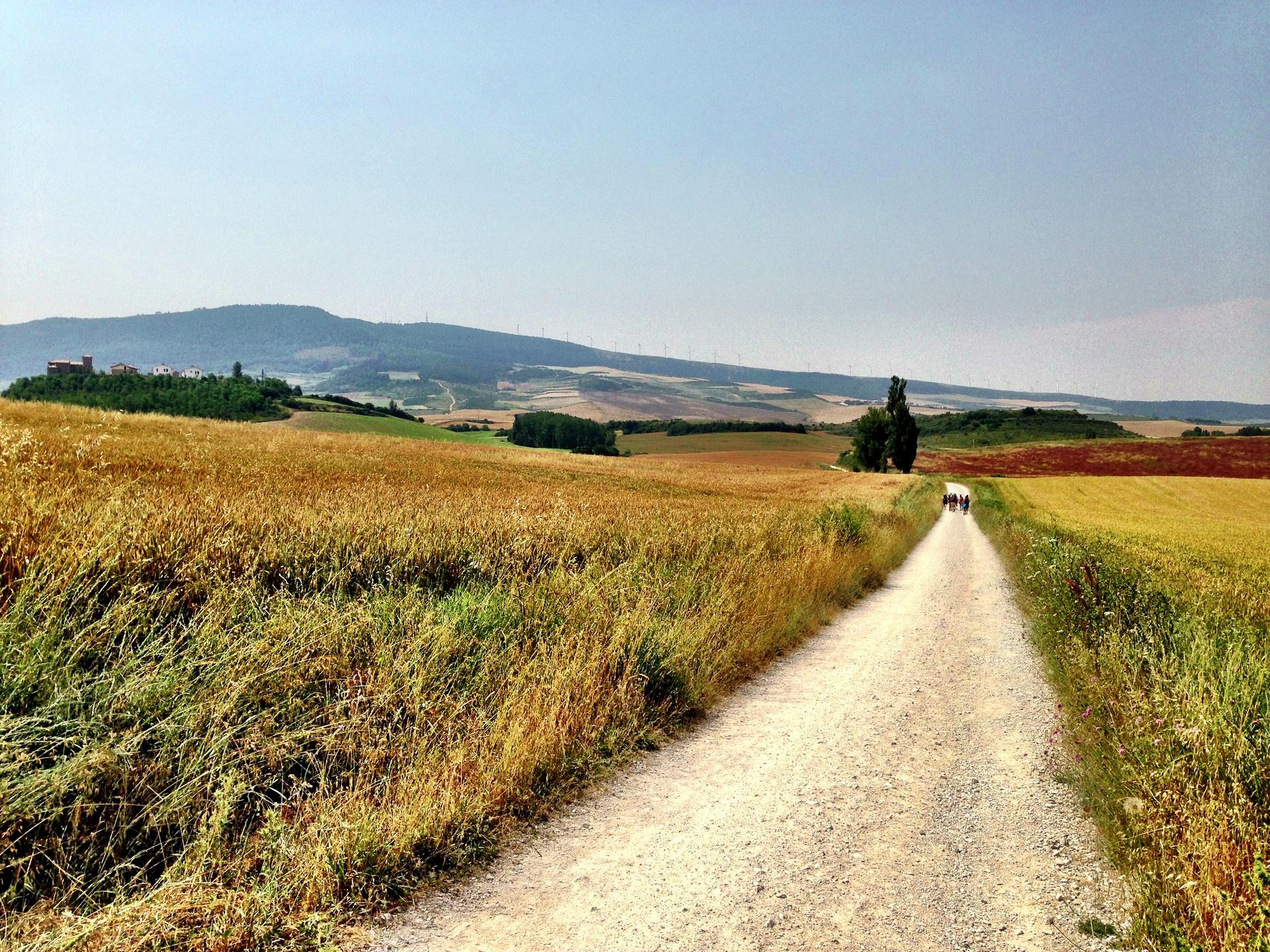 Near Pamplona