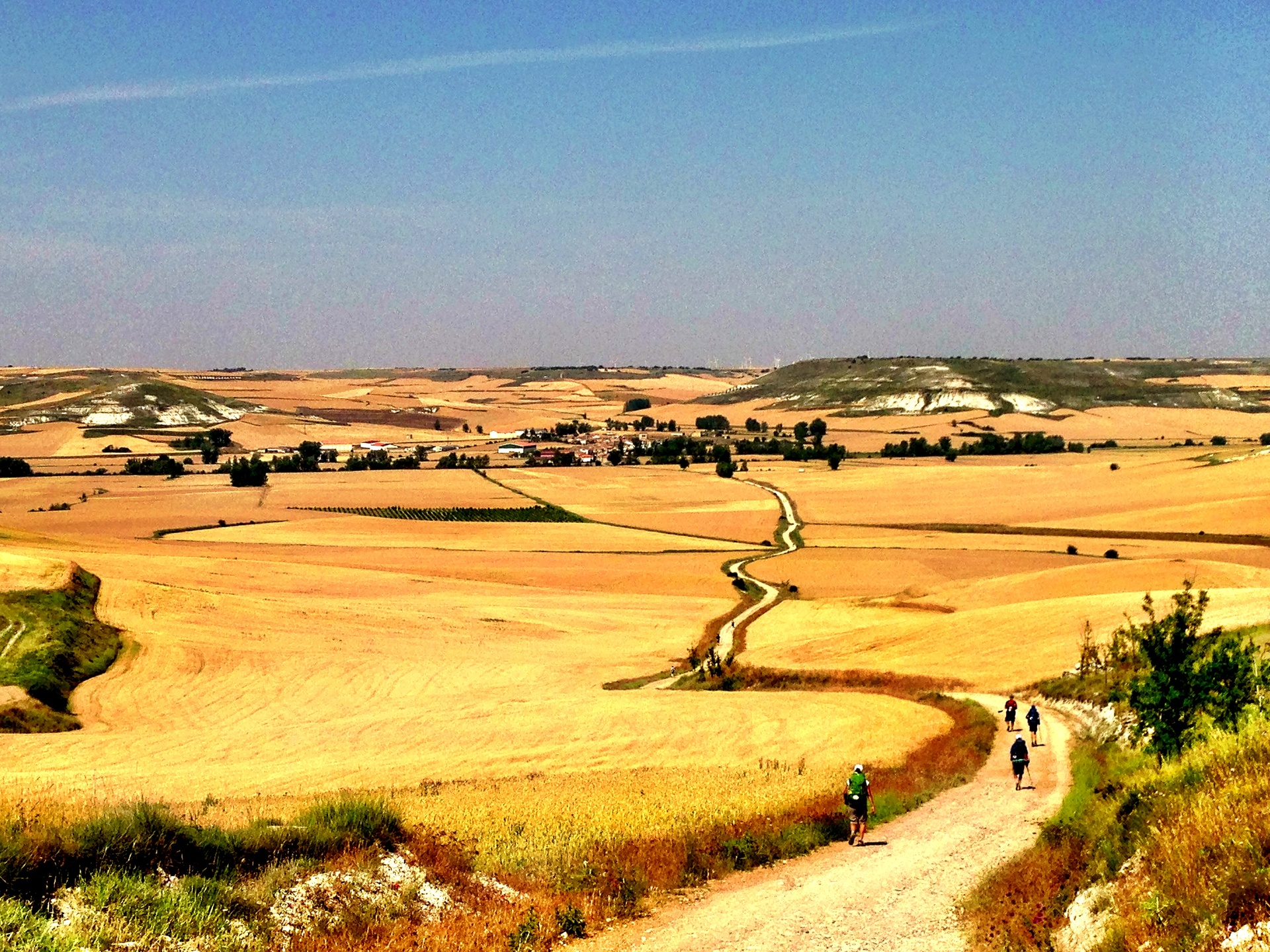 My Favorite Camino Picture